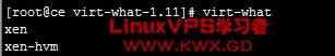 virt-what-vps.jpg